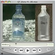Pronounce biota spring water